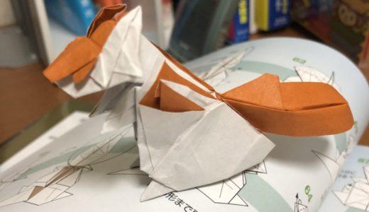 動物折り紙折ってみました